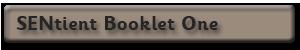 SENtient_Booklet1